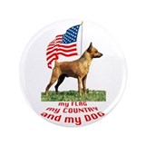 "minpin with flag 3.5"" Button"