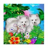 AMERICAN ESKIMO SUNSET Tile Coaster