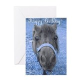Unique Cute horse Greeting Card
