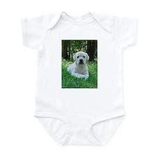 Unique Labrador 1 Infant Bodysuit