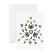 Molluscs Greeting Card-jellyroll