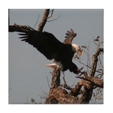 American Bald Eagles Tile Coaster