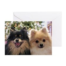 Pomeranians Greeting Cards (Pk of 10)