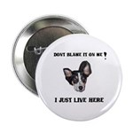 DONT BLAME ME , I JUST LIVE HERE Button