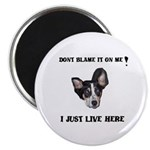 DONT BLAME ME , I JUST LIVE HERE Magnet