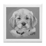 Golden Retriever Puppy b/w Tile Coaster