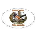 Spotted Towhee Oval Sticker (10 pk)