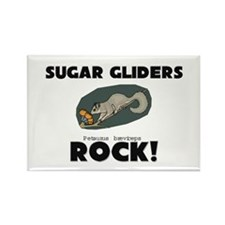 Sugar Gliders Rock! Rectangle Magnet (10 pack)