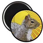 Pop Art Squirrel 2.25