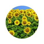 "Sunflower Cluster 3.5"" Button"