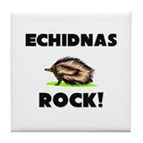 Echidnas Rock! Tile Coaster
