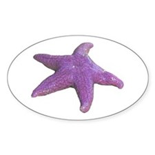 purple starfish Oval Sticker (50 pk)