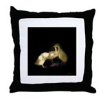 Dreams of Flight Throw Pillow