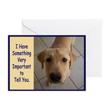 Yellow Lab Birthday Greeting Cards (Pk of 20)