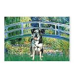Bridge / Catahoula Leopard Dog Postcards (Package