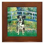 Bridge / Catahoula Leopard Dog Framed Tile