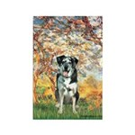 Spring / Catahoula Leopard Dog Rectangle Magnet (1