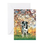 Spring / Catahoula Leopard Dog Greeting Cards (Pk