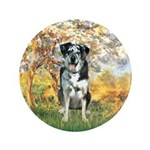 Spring / Catahoula Leopard Dog 3.5