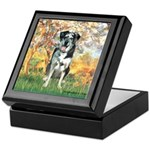 Spring / Catahoula Leopard Dog Keepsake Box
