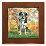 Spring / Catahoula Leopard Dog Framed Tile