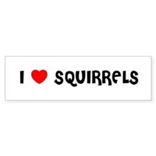 I LOVE SQUIRRELS Bumper Bumper Sticker