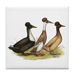 Crested Ducks Trio Tile Coaster