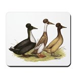 Crested Ducks Trio Mousepad