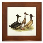 Crested Ducks Trio Framed Tile