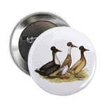 "Crested Ducks Trio 2.25"" Button"