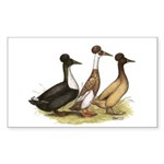 Crested Ducks Trio Rectangle Sticker 10 pk)