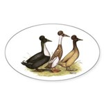 Crested Ducks Trio Oval Sticker (50 pk)