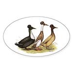 Crested Ducks Trio Oval Sticker (10 pk)