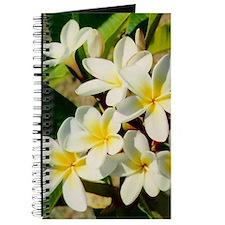 Frangipani/Plumeria Flowers Journal