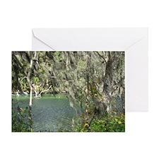 Florida Waters Card