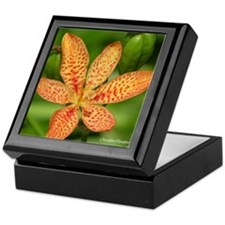 Blackberry Lilly Keepsake Box