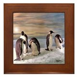 Penguins from Antarctica Framed Tile