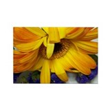 Cute Yellow flower Rectangle Magnet