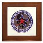 USAF R C O Framed Tile