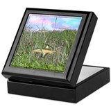 Fish in the meadow Keepsake Box