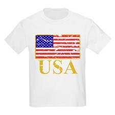 USA Flag (worn) T-Shirt