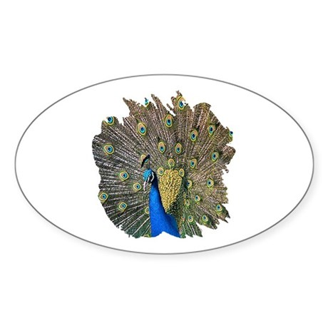 Peacock Oval Sticker (10 pk)