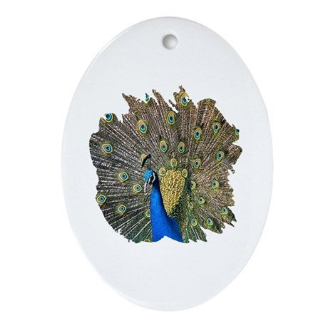 Peacock Oval Ornament