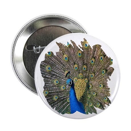 "Peacock 2.25"" Button (100 pack)"