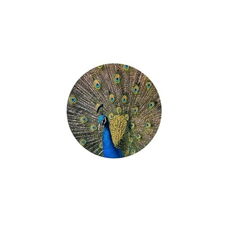 Peacock Mini Button