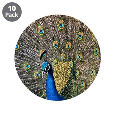 "Peacock 3.5"" Button (10 pack)"