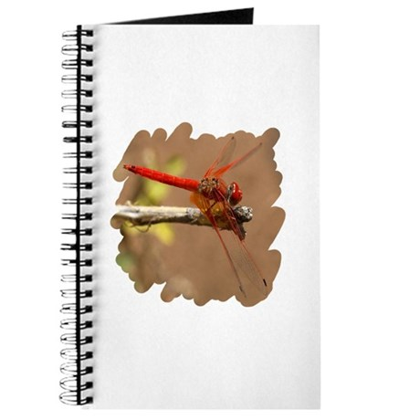 Red Dragonfly Journal