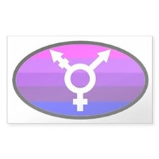 Transgender Oval 2 Rectangle Decal