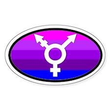 Transgender Oval 2 Oval Decal