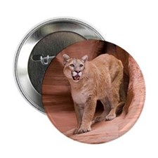 "Cougar 2.25"" Button (10 pack)"